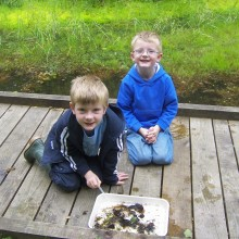 Pond Dipping Fun